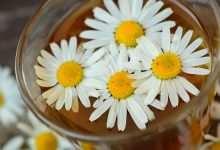 איזון צ'אקרה חמישית - צ'אקרת הגרון - המרכז התירואידי בעזרת פרחי באך