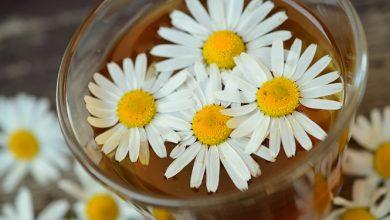 Photo of איזון צ'אקרה חמישית – צ'אקרת הגרון – המרכז התירואידי בעזרת פרחי באך