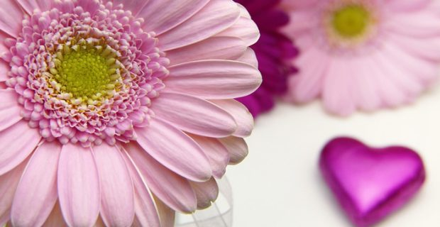 איזון הצ'אקרה רביעית- צ'אקרת הלב- המרכז ההוקי בעזרת פרחי באך