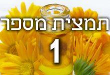 תמצית פרחי באך מספר 1- אגרימוני - אבגר AGRIMONY