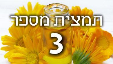 Photo of תמצית פרחי באך מספר 3 – ביץ' – אשור BEECH