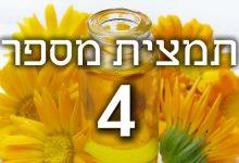 תמצית פרחי באך מספר 4- סנטורי - דרדר CENTAURY