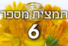 תמצית פרחי באך מספר 6- צ'רי פלם - דובדבן CHERRY PLUM