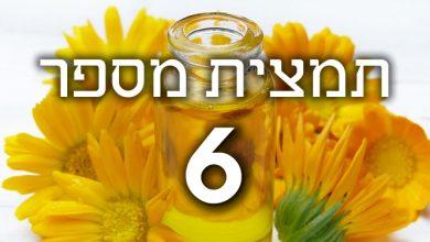 Photo of תמצית פרחי באך מספר 6- צ'רי פלם – דובדבן CHERRY PLUM