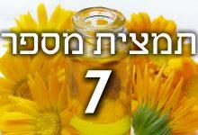 תמצית פרחי באך מספר 7- צ'סנט בד - ניצן הערמון CHESTNUT BUD