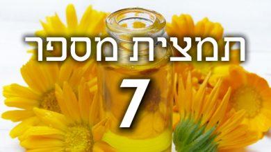 Photo of תמצית פרחי באך מספר 7- צ'סנט בד – ניצן הערמון CHESTNUT BUD