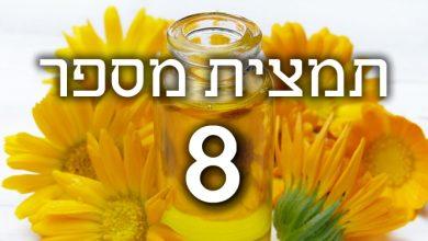 Photo of תמצית פרחי באך מספר 8- צ'יקורי – עולש CHICORY