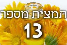 תמצית פרחי באך מספר 13- גורס - אלגומין GORSE