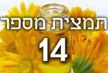 תמצית פרחי באך מספר 14- היטר - אברש HEATHER