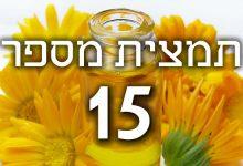 תמצית פרחי באך מספר 15- הולי - אדר מצוי HOLLY