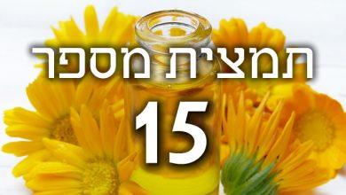 Photo of תמצית פרחי באך מספר 15- הולי – אדר מצוי HOLLY