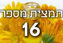 תמצית פרחי באך מספר 16- הניסקל - יערת הדבש HONEYSUCKLE