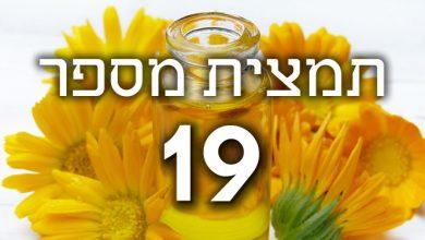 Photo of תמצית פרחי באך מספר 19- לרץ' – ארזית LARCH