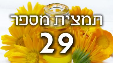 Photo of תמצית פרחי באך מספר 29- סטאר אוף בית לחם – כוכב בית לחם STAR OF BETHLEHEM