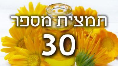תמצית פרחי באך מספר- 30- סוויט צ'סנט - ערמון מתוק SWEET CHESTNUT