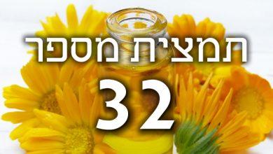 Photo of תמצית פרחי באך מספר 32- ווין – גפן VINE