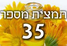 תמצית פרחי באך מספר 35- וויט צ'סנט WHITE CHESTNUT