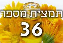 תמצית פרחי באך מספר 36- ווילד אוט - שיבולת שועל WILD OAT