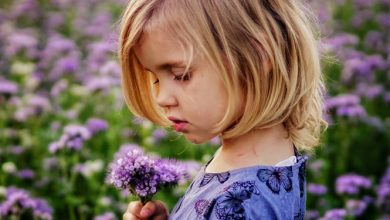 Photo of טיפול בתינוקות וילדים בעזרת פרחי באך