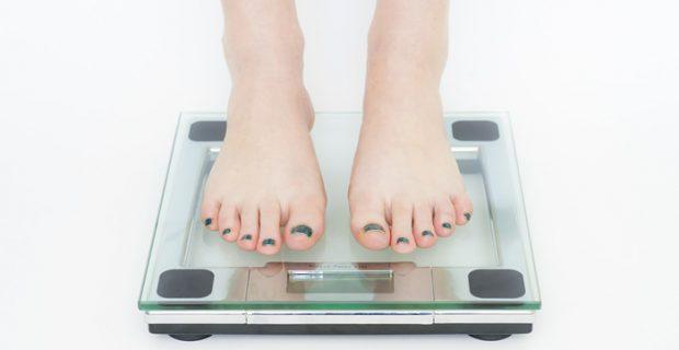 דיאטה הוליסטית