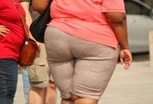 נטיה להשמנה בהסתכלות הוליסטית