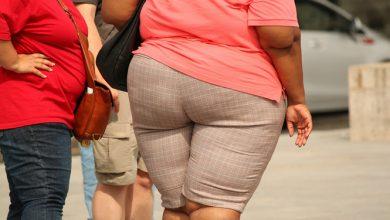 Photo of נטיה להשמנה בהסתכלות הוליסטית