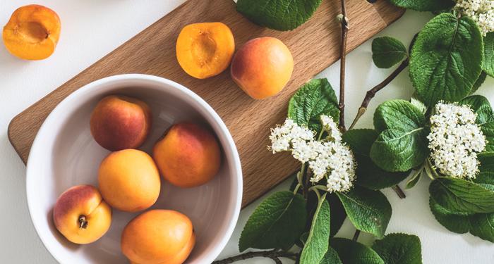 יכולות הריפוי של צמחי מרפא