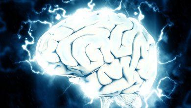 Photo of קינסולוגיה – למידה בתנועה ואימון המוח