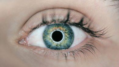 Photo of מהי אירידיולוגיה – העיניים כראי הגוף והנפש