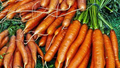 Photo of גזר – ערכים תזונתיים ויתרונות בריאותיים