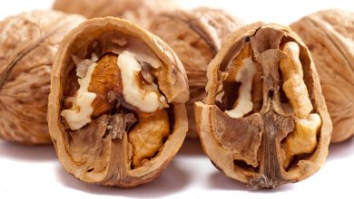 Photo of אגוז מלך – ערכים תזונתיים ויתרונות בריאותיים