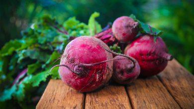 Photo of סלק אדום – ערכים תזונתיים ויתרונות בריאותיים
