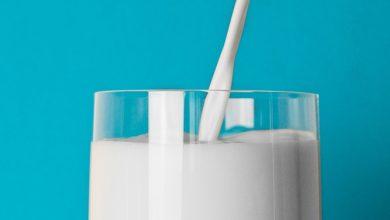 Photo of חלב פרה – ערכים תזונתיים ויתרונות בריאותיים
