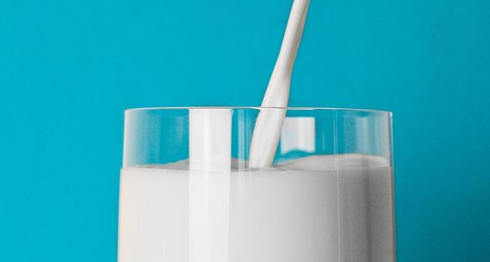 חלב פרה