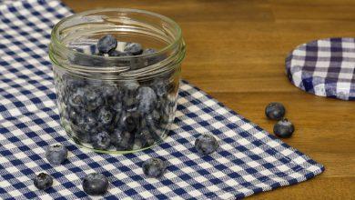Photo of אוכמניות – ערכים תזונתיים ויתרונות בריאותיים