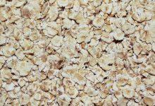 Photo of שיבולת שועל/ קוואקר – ערכים תזונתיים ויתרונות בריאותיים