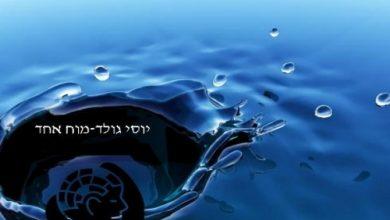Photo of יוסי גולד – לימודי מוח אחד – קורס קינסיולוגיה בירושלים